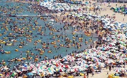 입추인 8일 동해안 해수욕장에 모처럼의 맑은 하늘이 드러나자 낙산 해수욕장에 11만여명의 인파가 몰려 더위를 식히고 있다.