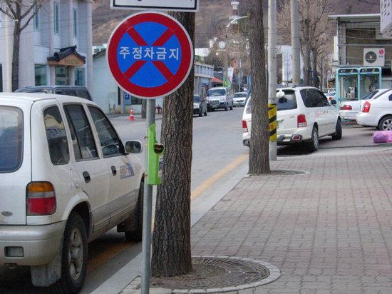 정선읍 도심 일부 표지판이 너무 낮게 설치돼 안전사고가 우려된다.