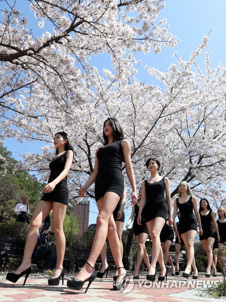 화창한 봄 날씨를 보인 10일 대전 대덕대학 모델학과 학생들이 야외수업 시간을 이용해 워킹연습을 하고 있다.