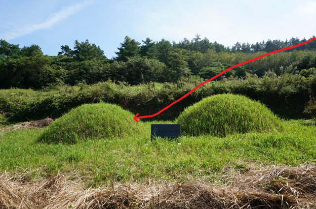 ▲ 묘소로 들어오는 맥로도. 사진 좌측이 부친,우측이 모친 묘소.