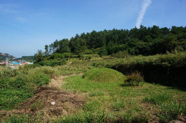 ▲ 박준영 변호사 부모 묘소.완도군 노화도 소재. 일손이 부족한 여는 시골처럼 묘소 뒤로는 잡풀이 우거져 있다.