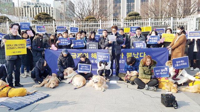 ▲ 동물권단체 '케어' 회원들은 최근 서울 종로구 정부서울청사 앞에서 체고 40cm 이상의 개 입마개 의무화에 반대하는 퍼포먼스를 벌였다.