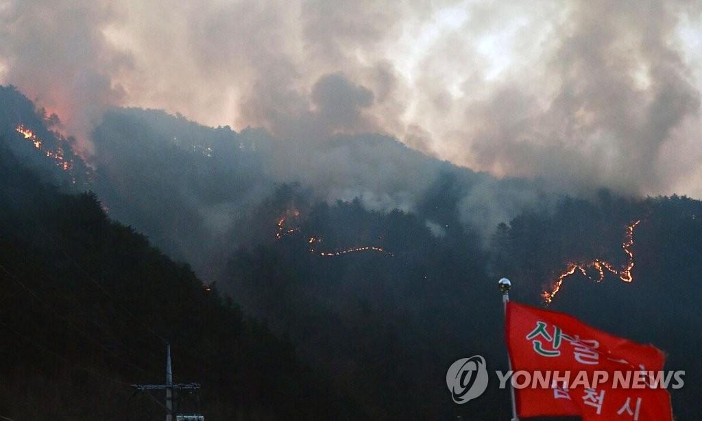 ▲ 강원 삼척시 노곡면 하마읍리에서 발생한 산불이 13일 인근으로 번지고 있다