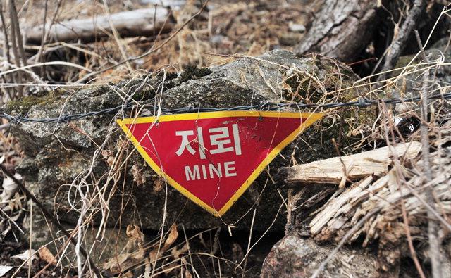 ▲ 양구 두타연 생태탐방로 곳곳에는 지뢰표시가 남아 있다.