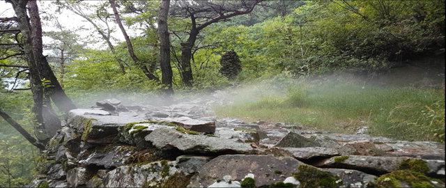 ▲ 최근 정선군 풍혈 지역에서 냉기가 흘러나오는 모습이 포착됐다.바위 틈에서 흘러나온 냉기가 습하고 뜨거운 공기와 만나 국지적으로 안개가 생기는 현상을 연출하고 있다.  사진제공=국립수목원