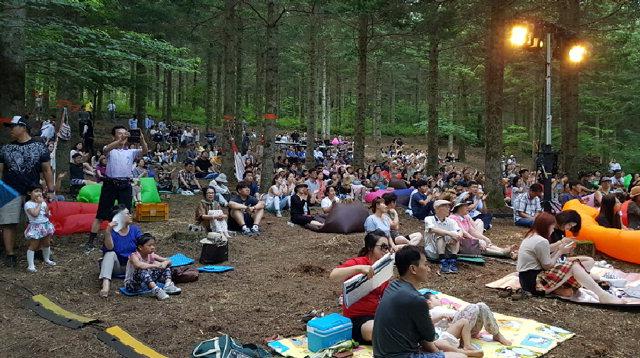 ▲ 지난달 21일 대관령 '음악치유의 숲' 음악콘서트에서 관람객들이 공연을 즐기고 있다.