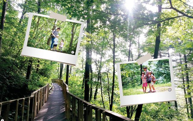 ▲ ① 숲체원 등산길 ② 숲체원에 방문한 가족들이 사진을 찍고 있다. ③ 숲체원에 방문한 가족들이 사진을 찍고 있다. ④ 숲체원 숙소 전경.