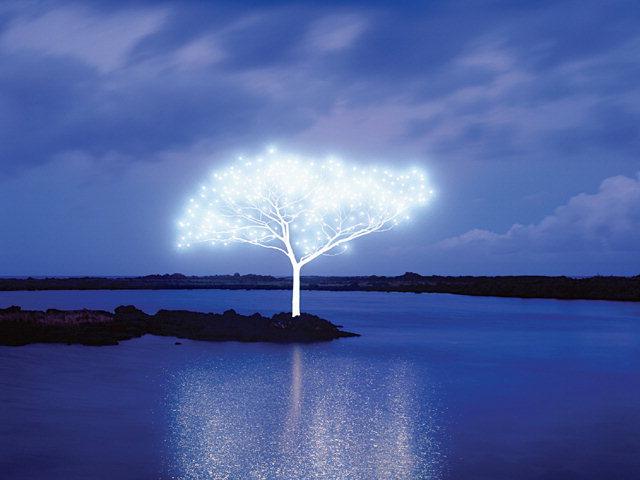 ▲ 이정록 작 'Tree of life'