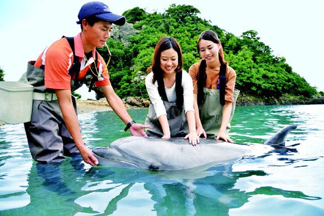 ▲ 와카야마현 동남부에 자리잡은 다이지 지역에서는 고래 먹이주기를 비롯 다양한 고래체험이 가능하다.