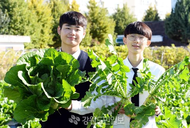 춘천 소양고 내 야외실습장에서 조찬연(18·왼쪽) 학생과 조우연 학생이 직접 재배한 작물인 배추와 무를 들고 있다. 김명준