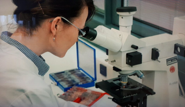 ▲ 프라운호퍼연구소 연구원 모습