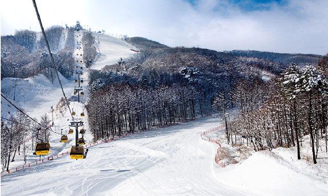 ▲ 휘닉스파크 스키장