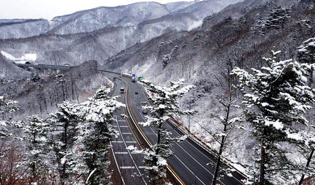 ▲ 겨울 선물로 이만한 풍경이 또 있을까.대관령에 밤새 소복하게 눈이 쌓여 '은빛 별천지'를 연출했다. 본사DB