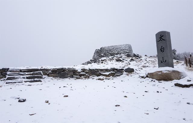 ▲ 겨울산의 백미인 태백산에 6일 많은 눈이 쌓이면서 아름다운 설경을 연출하고 있다.