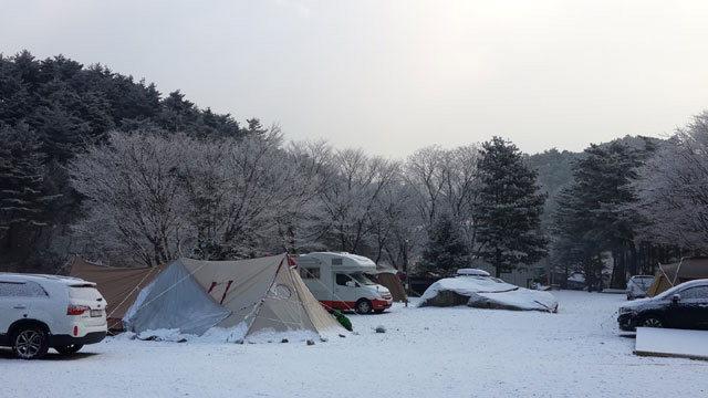 ▲ 강릉 대관령솔내음오토캠핑장이 눈으로 덮여 절경을 이루고 있다.