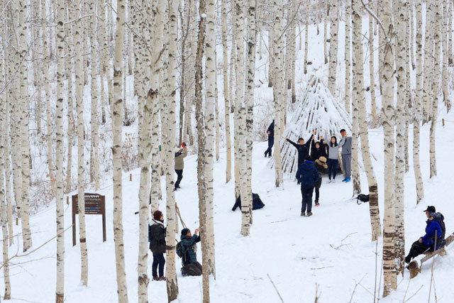 ▲ 최근 내린 눈으로 인제 원대리 자작나무 숲이 순백의 아름다움으로 장관을 이룬 가운데 탐방객들이 등산로 주변에서 사진을 찍으며 한 폭의 풍경화를 연출하고 있다.