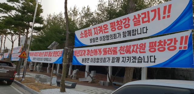▲ 평창강 소수력발전소 조성을 반대하는 현수막이 군청 진입로에 걸려있다.