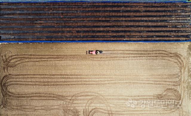▲ 본격적인 영농철이 시작된 가운데 14일 춘천 서면 감자밭에서 농민이 거름을 뿌리며 농사 준비를 하고 있다.  최유진