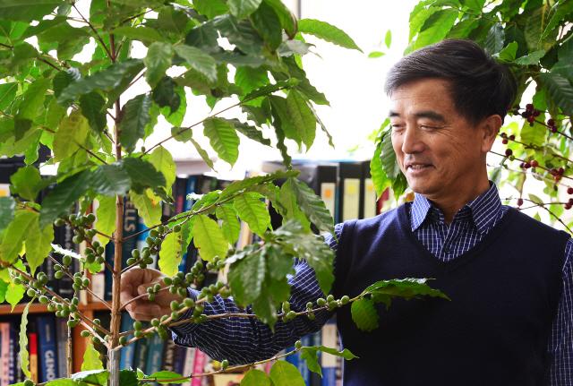 ▲ 블랙 아이보리 커피의 대량생산 기술을 개발한 강원대 강원희 교수가 최근 본지와 인터뷰를 가졌다. 김명준