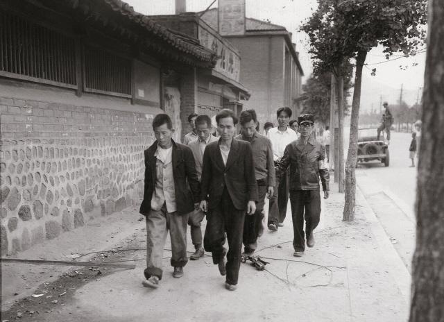 ▲ 1950년 9월 29일 서울 수복 후 군경과 우익청년단체들이 완장을 차고 부역혐의자들을 연행하고 있다.