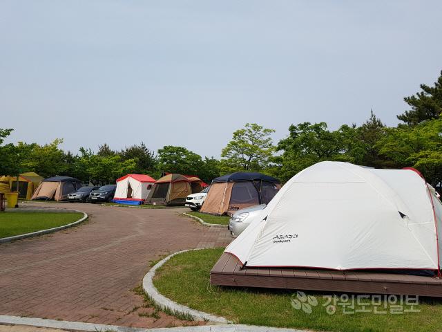 ▲ 주말인 지난 11일 고성 송지호 오토캠핑장에 가족,친지단위의 관광객들이 대거 찾아 캠핑을 즐기며 즐거운 한때를 보냈다.
