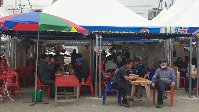 ▲ 19일 속초 오징어 난전이 설치된 동명항 일원이 관광객들로 북적이고 있다.