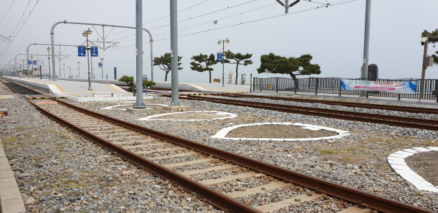 ▲ 정동진역의 열차 선로.역(驛) 플랫폼을 벗어나면 곧바로 옥빛 바다가 펼쳐진다.