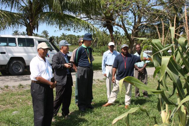 ▲ 적정농산물 재배를 위한 야외 토론회를 하는 우리 팀과 파푸아뉴기니 농업기술원 연구원들.
