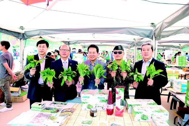 지난 5월 열린 홍천한우 산나물축제 기간 명이나물 홍보
