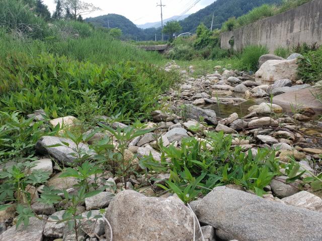 ▲ 28일 오전 춘천의 대표 피서지인 지암계곡이 계속된 가뭄에 바짝 말라 있다. 윤왕근