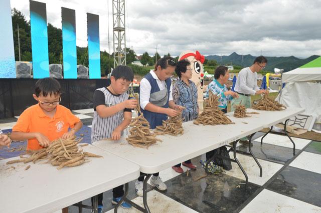 ▲ 횡성 더덕축제 관광객들이 더덕쌓기 프로그램을 즐기고 있다.