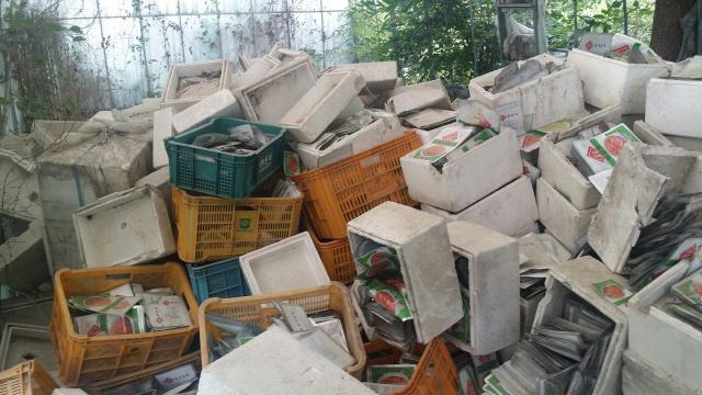 ▲ 홍천읍 상오안리 국도 44호선 인근 소나무 숲속에 쓰레기가 방치되고 있다.