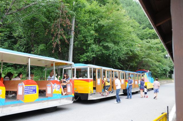 ▲ 동굴까지 들어가는 용연열차(트램카)