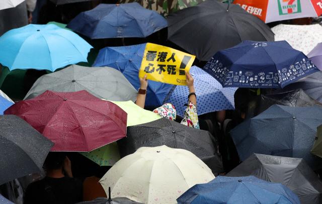 18일 오후(현지시간) 홍콩 빅토리아 공원에서 송환법에 반대하고 경찰의 강경 진압을 규탄하는 대규모 도심 집회에 참가한 한 홍콩 시민이 우산행렬 사이로 손팻말을 들고 있다.  이날 집회는 홍콩 대규모 도심 시위를 주도했던 민간인권전선 주도로 열렸다.