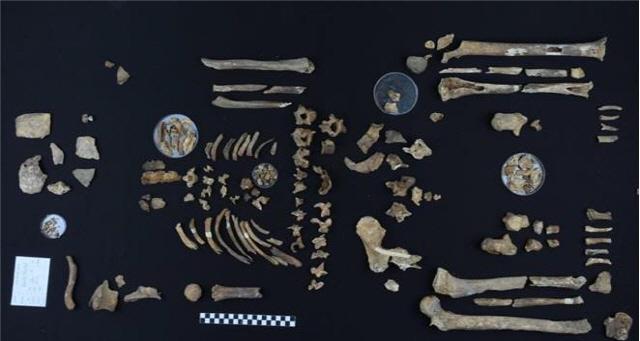 ▲ 국방부가 지난 5월 30일 DMZ내 화살머리고지 일대에서 완전 유해 형태로 발굴된 6·25 전사자가 고(故) 남궁선 이등중사로 최종 확인됐다고 21일 밝혔다. 사진은 고(故) 남궁 선 이등중사 유해.  연합뉴스