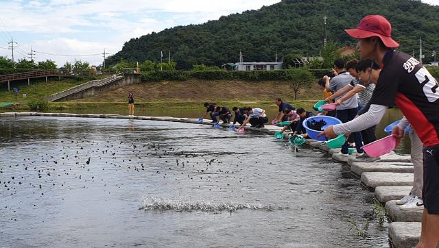 ▲ 철원군은 지난 5일 김화읍 화강 다슬기 축제장에서 다슬기 종패 방류행사를 진행했다.