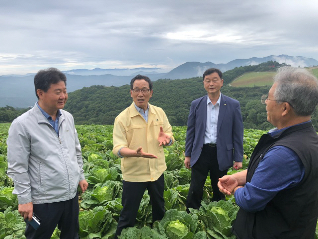 ▲ 한국농수산식품유통공사(aT) 이병호 사장은 9일 고랭지 배추 주산지인 강릉시 왕산면 안반데기를 방문,수급안정에 최선을 다하겠다고 밝혔다.