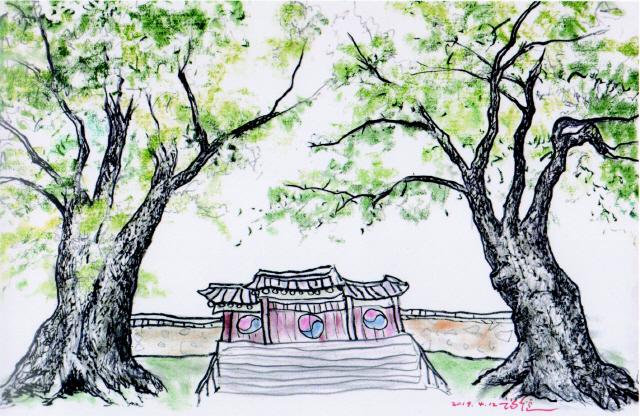 ▲ 이형재 작 홍천 희망리350년 느티나무