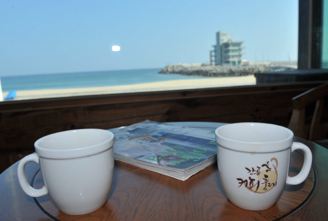 ▲ 강릉의 가을은 진한 커피향이 더해지는 계절이다.올해 커피축제는 10월 3∼6일 강릉아레나와 안목해변 일원에서 열린다. 본사DB