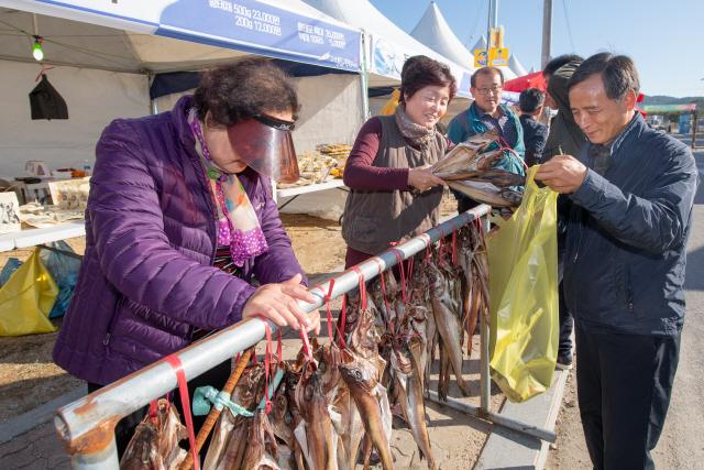 ▲ 제21회 고성통일명태축제가 오는 17~20일 고성 거진11리 해변일원에서 펼쳐진다.사진은 지난해 고성통일명태축제 모습.