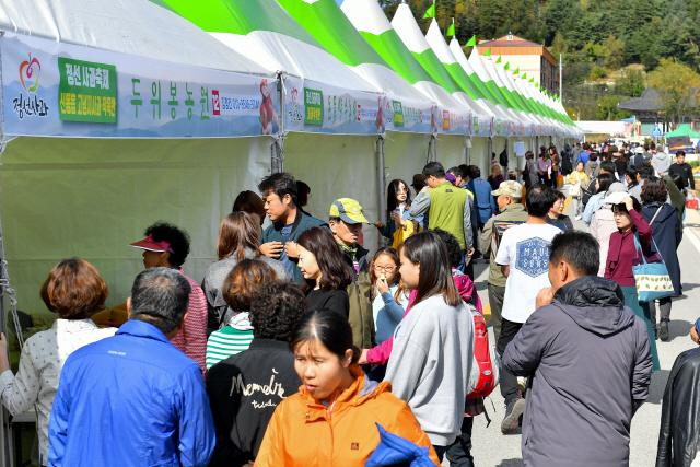▲ 정선사과축제 마지막 날인 20일 임계사통팔달시장에 가을여행에 나선 관광객들의 발길이 이어졌다.