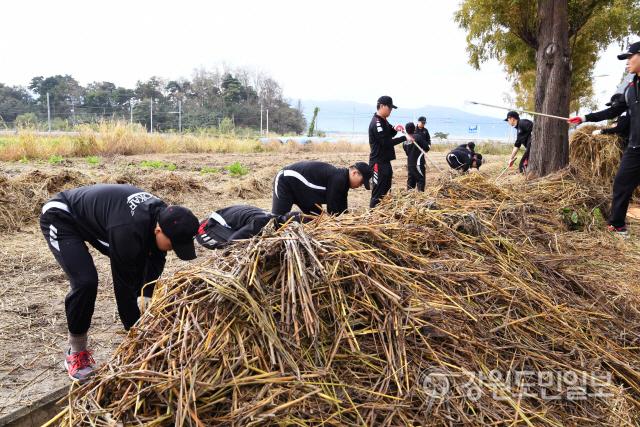 ▲ 공군 제18전투비행단은 23일 강릉시 월호평동에서 태풍피해를 입은 농수로와 도로에 쌓인 볏집과 쓰레기 등을 수거했다.