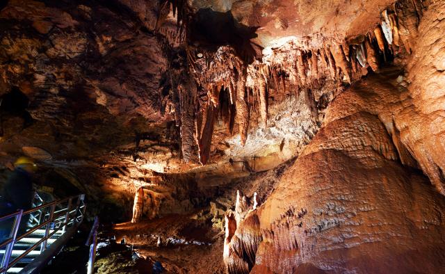 ▲ 천곡황금박쥐동굴