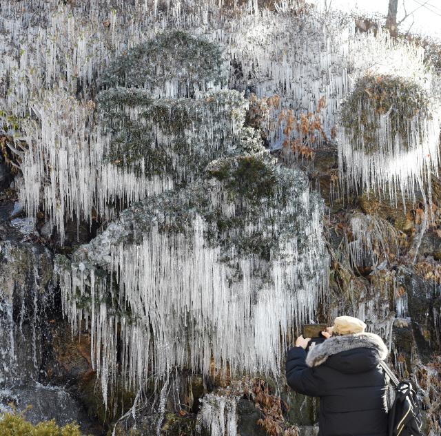 ▲ 찬바람이 불며 체감온도가 크게 떨어진 27일 춘천세종호텔에서 한 방문객이 얼어붙은 폭포를 휴대폰 카메라에 담고 있다.   최유진
