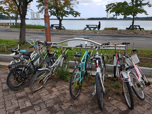 ▲ 강릉 경포호수에 설치된 자전거 거치대에 녹슬고 망가진 자전거들이 1년 넘게 방치돼 있다.