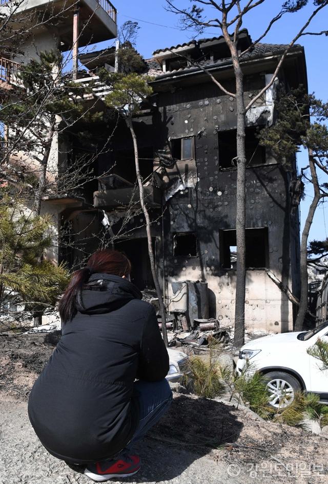 ▲ 5일 고성군 토성면 용촌리에서 산불로 펜션 5동을 잃은 한 주민이 땅바닥에 앉아 불에 탄 건물을 바라보고 있다.  최유진