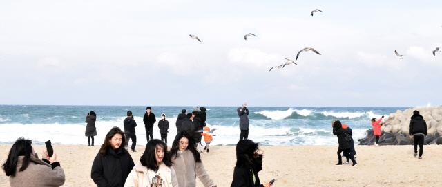 ▲ 낮 최고 기온이 8도까지 오르면서 비교적 따뜻한 날씨가 이어진 주말(11~12) 안목해변이 겨울바다를 만끽하러 온 시민·관광객들로 북적였다. 이연제