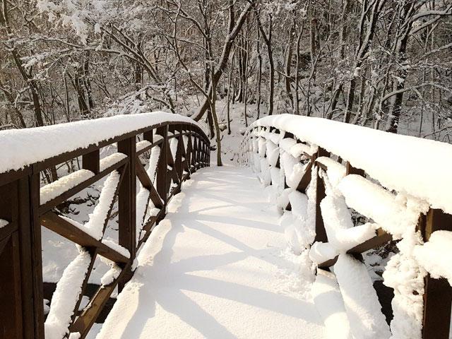 ▲ 평창 오대산 선재길은 눈과 얼음의 향연장이다.