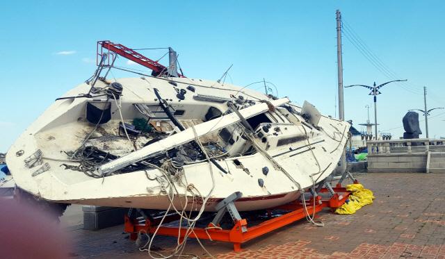 ▲ 동해시 대진항 주변에 불법으로 장기 방치된 폐선박.