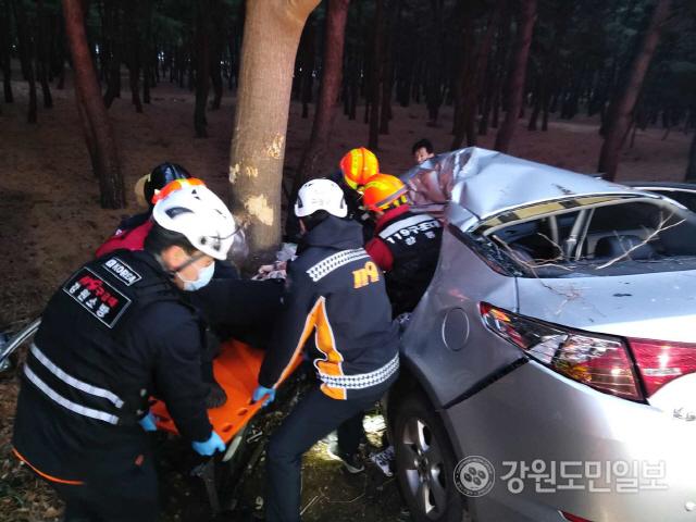 ▲ 15일 오전 6시 53분쯤 강릉시 송정동의 한 도로에서 주행중이던 승용차가 가로수를 들이받는 사고가 발생해 운전자 A(21)씨 등 2명이 크게다쳐 출동한 119에 의해 인근 병원으로 옮겨졌다.